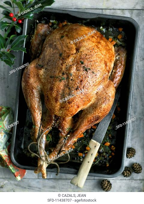 Roast turkey in a roasting tin