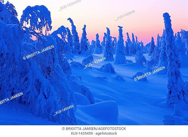 Winter landscape. Scandinavia