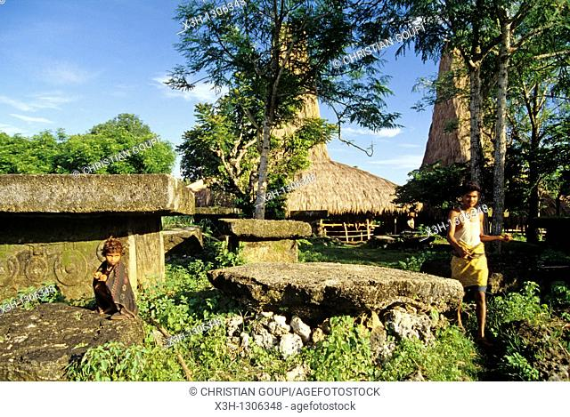 tombs and traditional Sumbaneese houses, Sumba island, Lesser Sunda Islands, Republic of Indonesia, Southeast Asia and Oceania