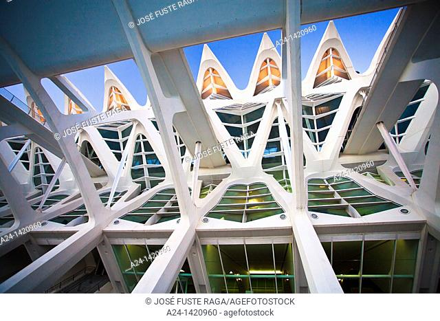 Science Museum, City of Arts and Sciences by S. Calatrava, Valencia, Comunidad Valenciana, Spain