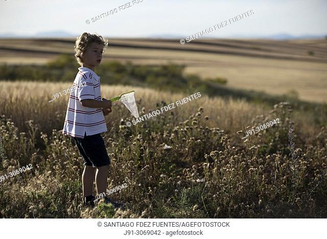 Boy in cereal fields. Ajalvir. Madrid Province. Spain