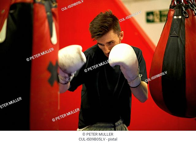 Boxer working out, using punch bag