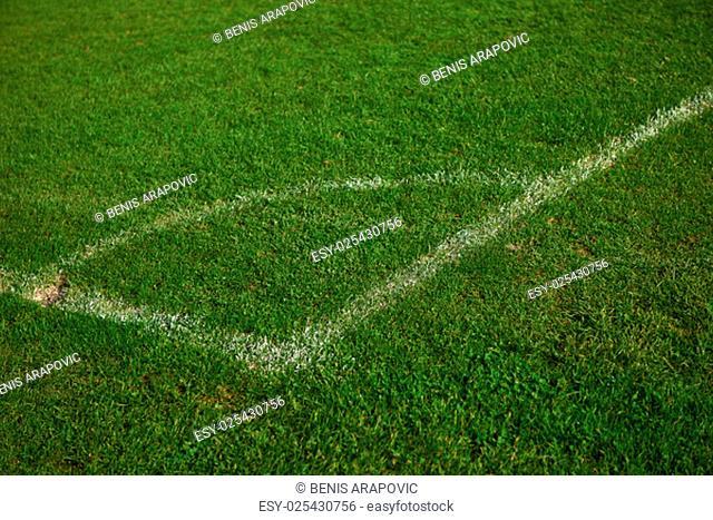 Corner of the soccer field green grass background