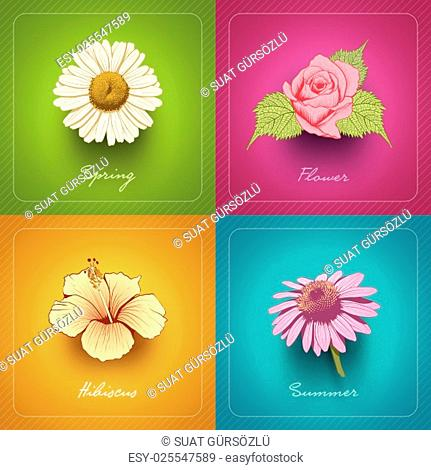 Vector modern card design collection with hand drawn flower