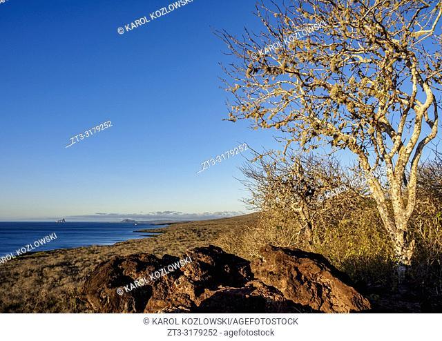 Cerro Tijeretas, San Cristobal or Chatham Island, Galapagos, Ecuador