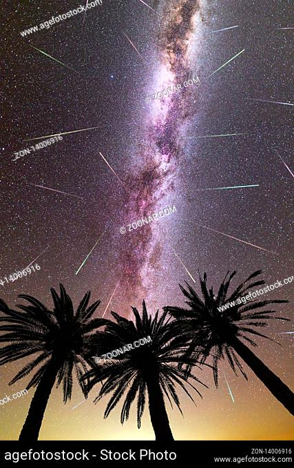 A view of a Meteor Shower and the purple Milky Way with three palm trees silhouette in the foreground. Night sky nature summer landscape