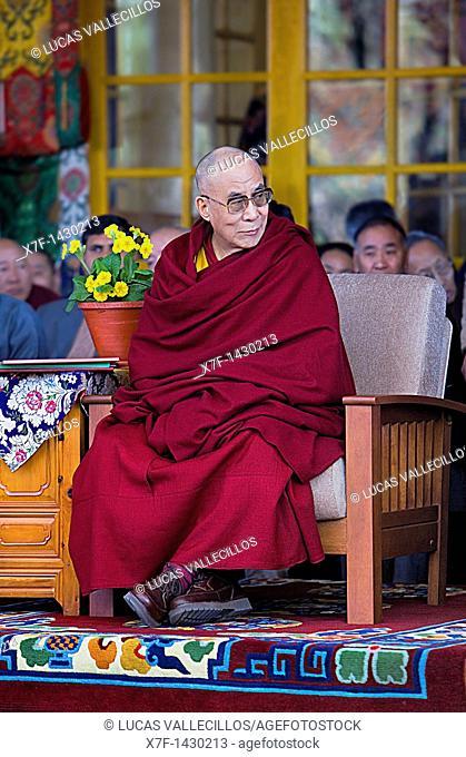 His holiness the Dalai Lama, in Namgyal Monastery,in Tsuglagkhang complex  McLeod Ganj, Dharamsala, Himachal Pradesh state, India, Asia