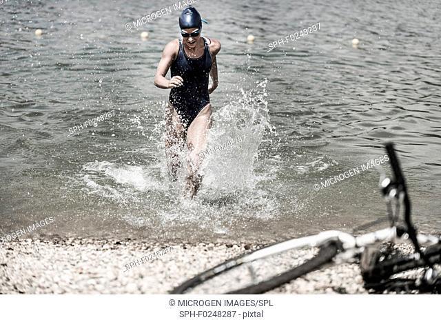 Triathlete in training, running into water