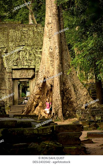 Woman tourist contemplating the size of the Strangler Figs that surround Ta Prohm Temple; Siem Reap, Cambodia
