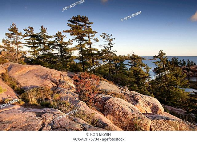 Pink granite and windswept trees of Georgian Bay on the Chikanishing Trail, Killarney Provincial Park, Ontario, Canada