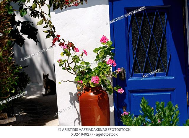old district in Athens Plaka
