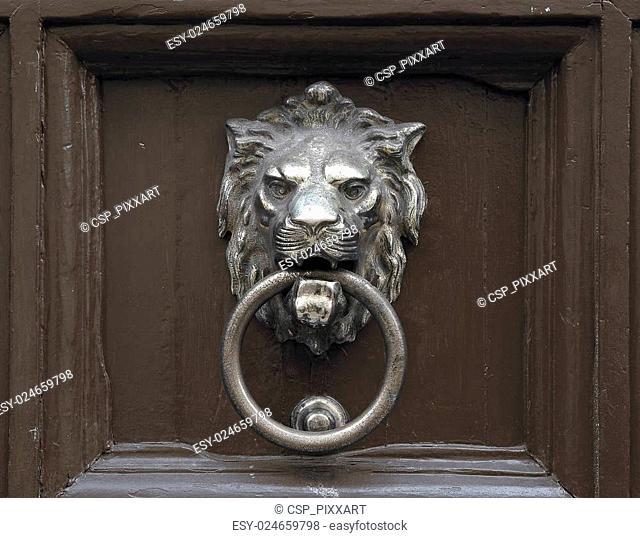 Door with lion door knocker