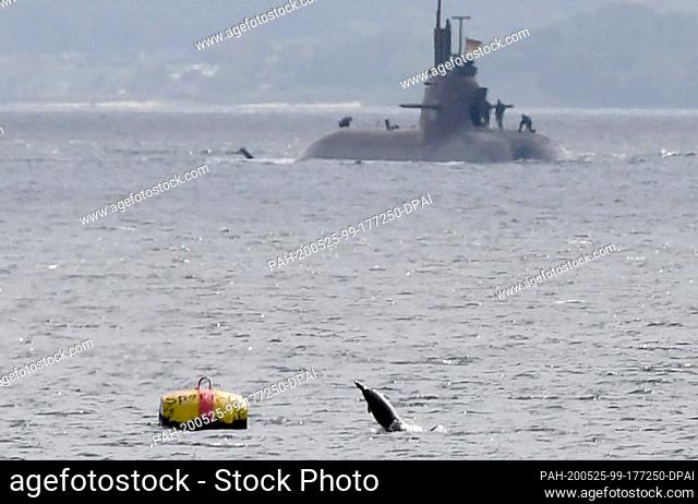 "25 May 2020, Schleswig-Holstein, Eckernförde: A porpoise jumps out of the Baltic Sea while the German submarine """"U33"""" is heading for its home port"