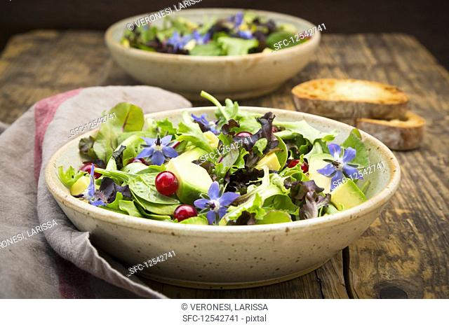 A mixed green salad with avocado, redcurrants and borage flowers