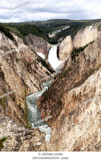 Grand Canyon of Yellowstone River, Yellowstone National Park, Wyoming, USA