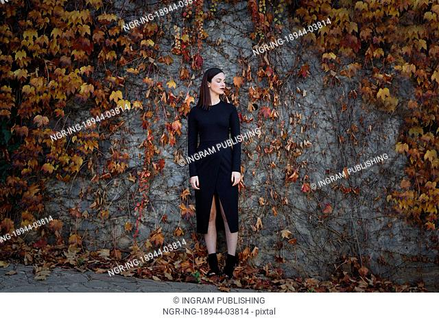 Beautiful young woman, model of fashion, on wall full of autumn leaves, with eyes closed. Fine art photograph