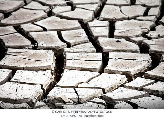 Dry land texture in desert