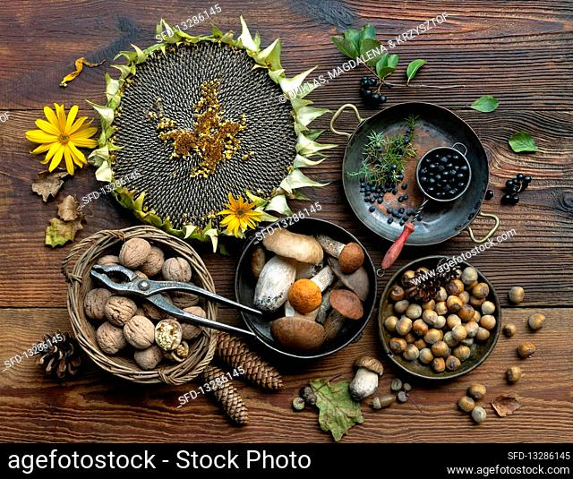 Forest autumn harvest on old wooden table