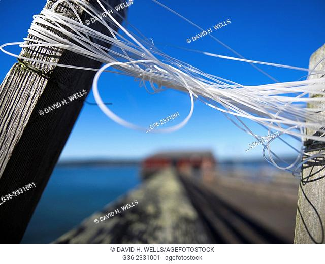 Plastic ropes tied on wooden post in Coupeville, Washington, United States