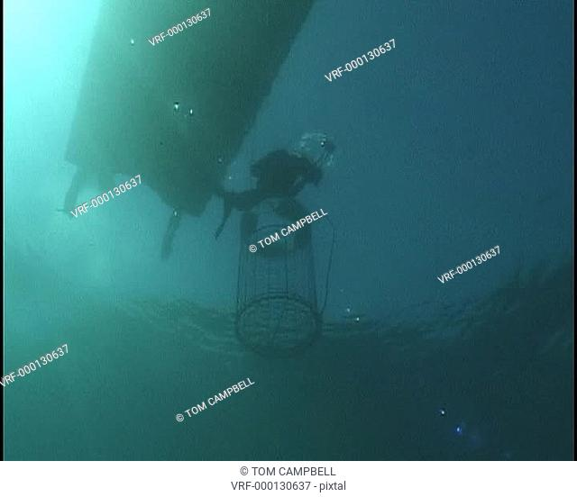 Shark cage and cameraman near water surface. Cape Province. South Africa
