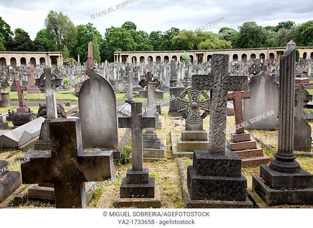 Brompton cemetery - London UK