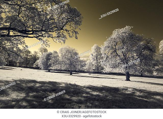 A colour infrared image of the North Somerset countryside at Wrington, England