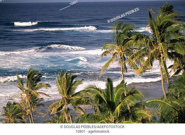 Kauai. Hawaii. USA