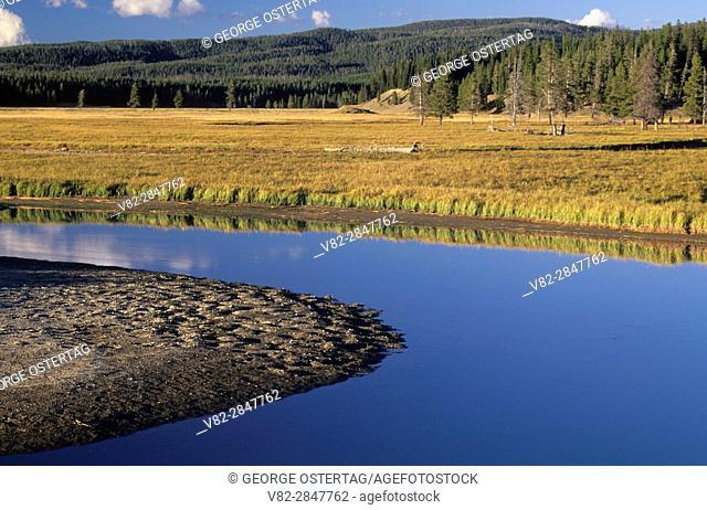 Pelican Creek, Yellowstone National Park, Wyoming