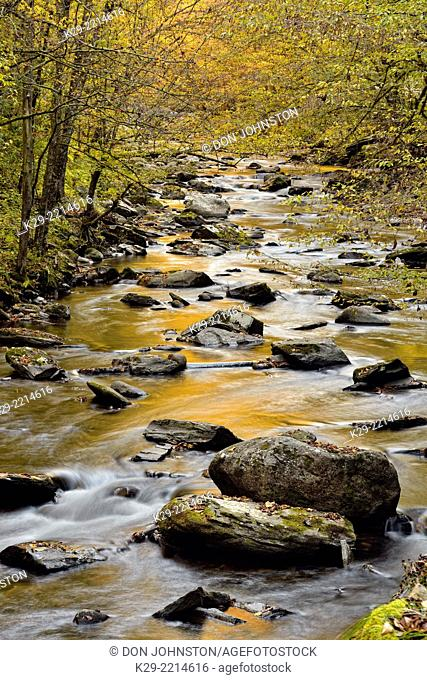 Autumn foliage reflected in the Middle Prong of the Little River at Tremont, Great Smoky Mountains NP, Tennessee, USA