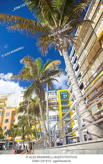 View of the Las Canteras beachfront in Las Palmas de Gran Canaria. Las Palmas, Gran Canaria, Canary Islands