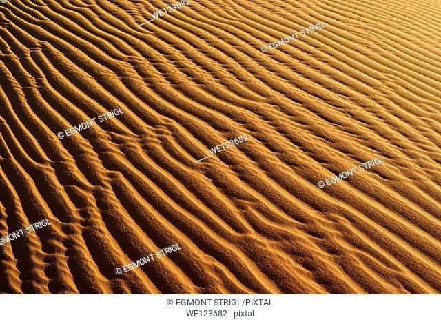 Sandripples on sanddunes at Erg Mehejibad, Immidir or Mouydir, Algeria, Sahara, North Africa