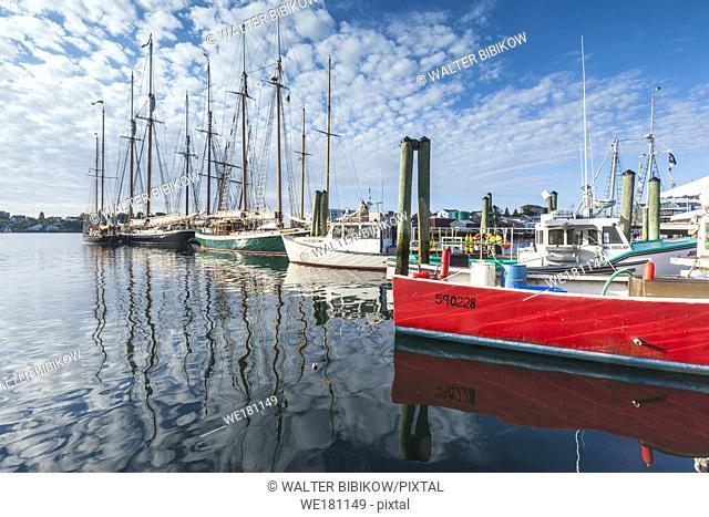 USA, New England, Massachusetts, Cape Ann, Gloucester, Gloucester Schooner Festival, schooners in the commerical port