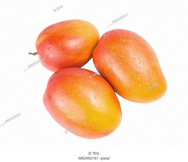 Ripe mango fruit on white background, tropical fruit