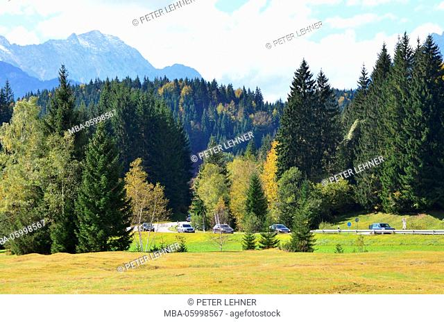 Germany, Bavaria, Isar valley, mixed forest, country road