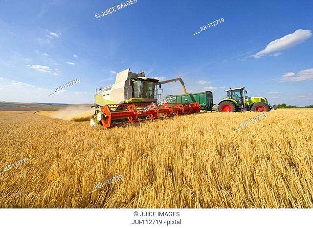 Combine harvester filling tractor trailer in sunny barley field