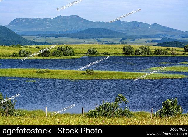 Lake des Bordes, Regional Nature Park of Volcans d'Auvergne, Puy de Dome departement, Auvergne Rhone Alpes, France, Europe