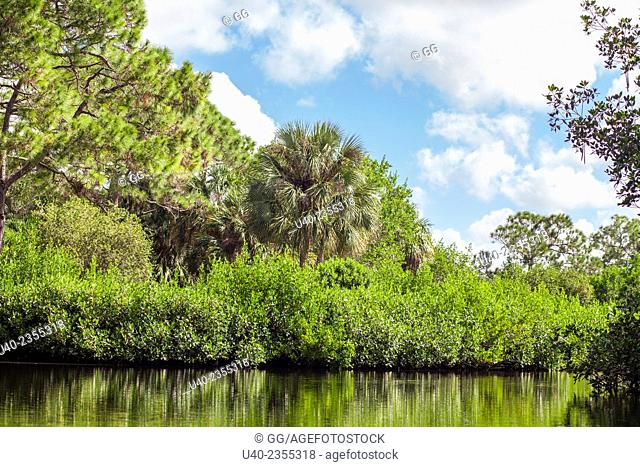 Everglades, Fort Lauderdale, Florida, USA