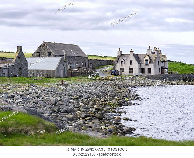 Landscape with farm at Sumburgh Head on the Shetland Islands. Europe, northern europe, great britain, scotland, Shetland Islands, June