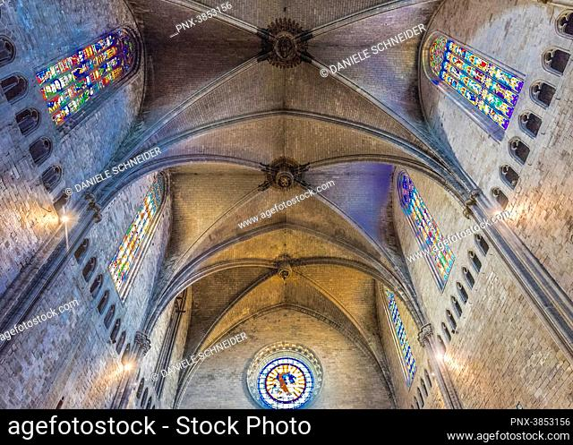 Spain, Catalonia, Girona, cathedral of Saint Mary, gothic arches of the nave (15th century)