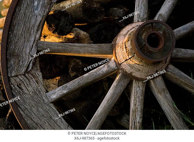 Broken cart wheel with missing spoke and logs on a farm at Paciano in Umbria, Italy lit by low evening sunlight