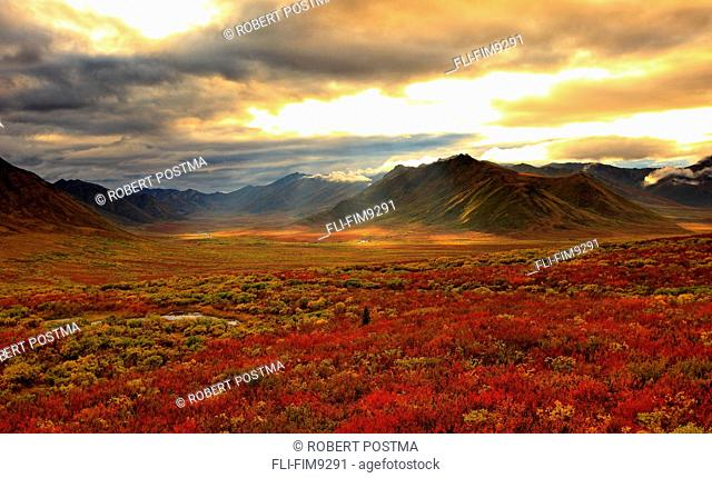 Shaft of sunlight hitting the fall colours of the Dempster Highway, Yukon