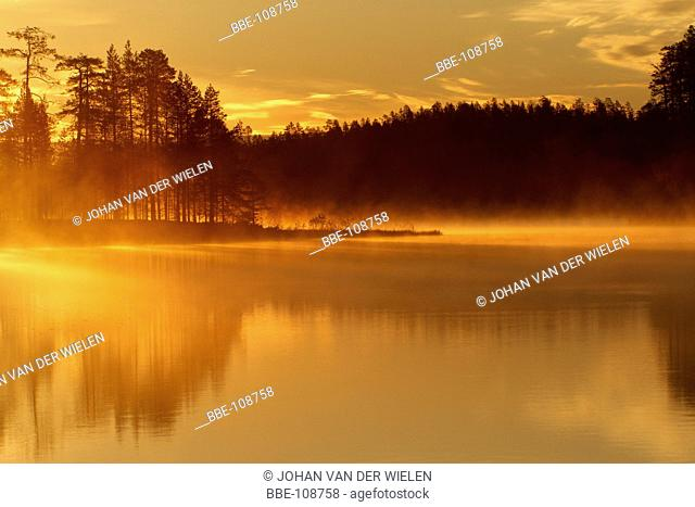 yellow morning light shines over the misty lake