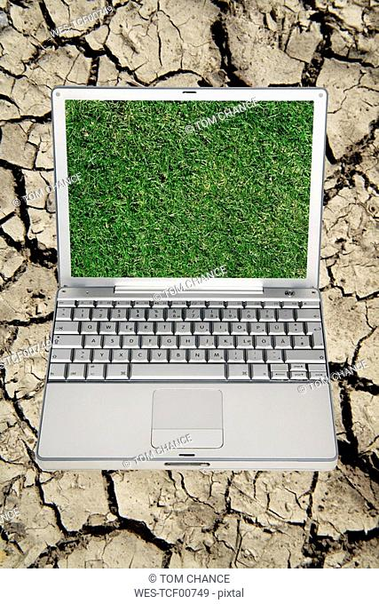 Notebook, Screensaver, Lawn, close up