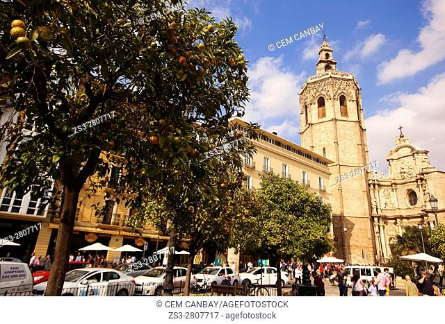 View to the'Miquelet' or 'Miguelete' tower (built in 14th century), Cathedral with orange trees in the foreground, Valencia, Spain, Europe