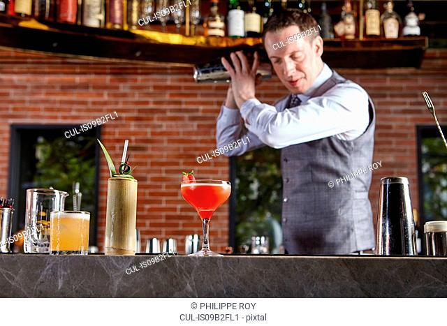Bartender shaking cocktail shaker