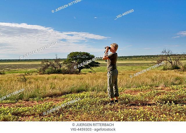 Kgalagadi Transfrontier Park, Mabuasehube Section, Kalahari, South Africa, Botswana, Africa - Kgalagadi Transfrontier Park, South Africa, Botswana, 21/02/2014