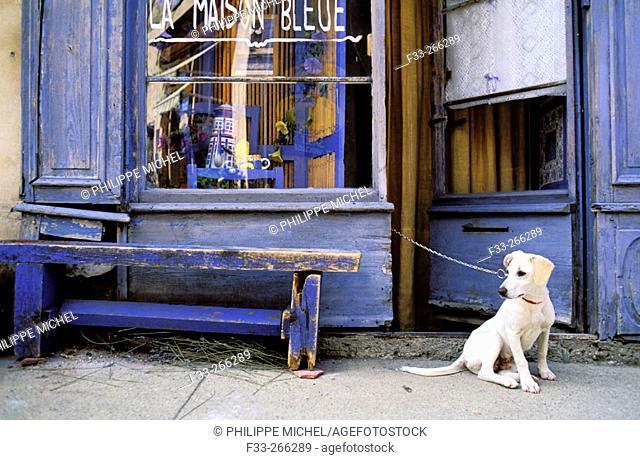 La Maison Bleue. Sault. Vaucluse. Provence. France