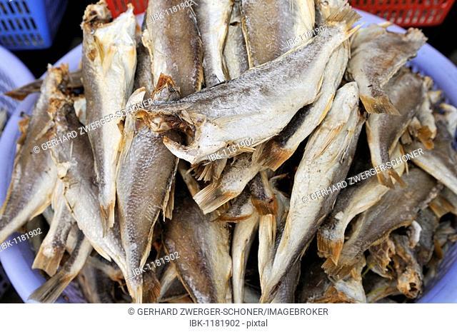 Dried fish in a plastic bowl, fish market, Vinh Long, Mekong Delta, Vietnam, Asia