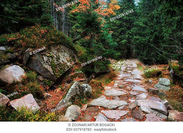 Stone Trail in Karkonosze Mountains