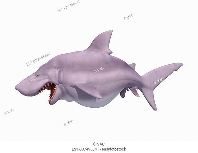 3D digital render of a cartoon white shark isolated on white background